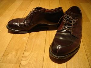 私の愛用している靴