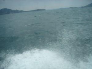 帰りの「せいしょう」から。海は依然荒れている。