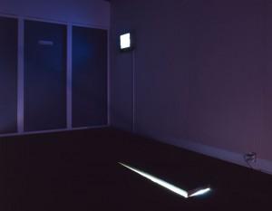 私が制作した+Galleryでのインスタレーション作品。ギャラリーの床下の小さな空間にもう1つの隠されたギャラリーを制作。