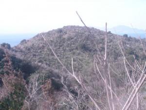 山頂より 山は萌葱色だ