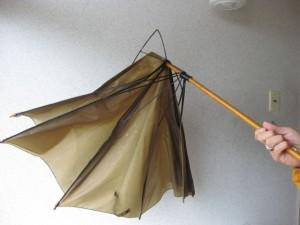 強風で見るも無惨な傘