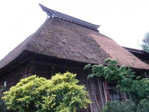 葺き替えた草屋根。すばらしい姿だ。