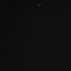 蛍の飛跡。見えますか?