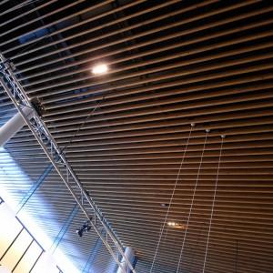 デザインの間の特徴的な天井