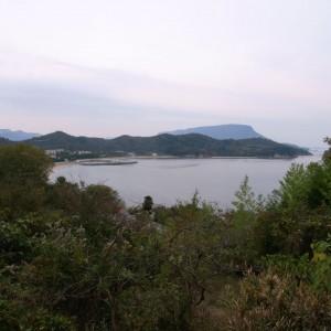 畑から見る大島船着場方面の風景